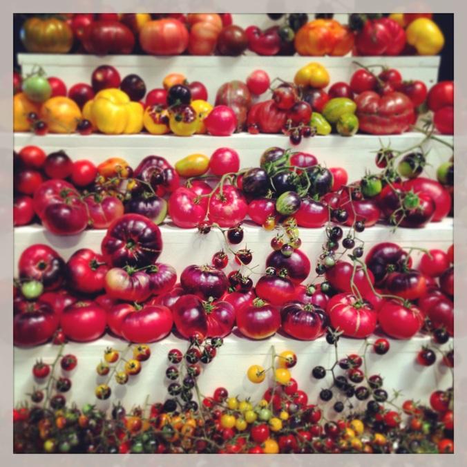 heirloom expo tomatoes